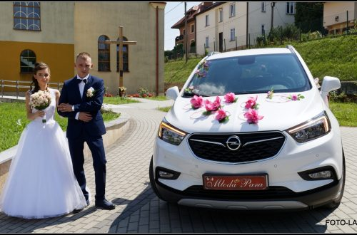 IMG 3423 DxO 2 500x330 samochód