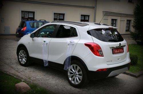 IMG 8966 500x330 Auto do ślubu   Promocja   oferta specjalna